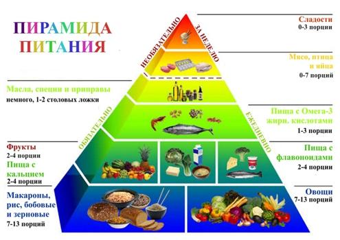 здоровье семьи реферат